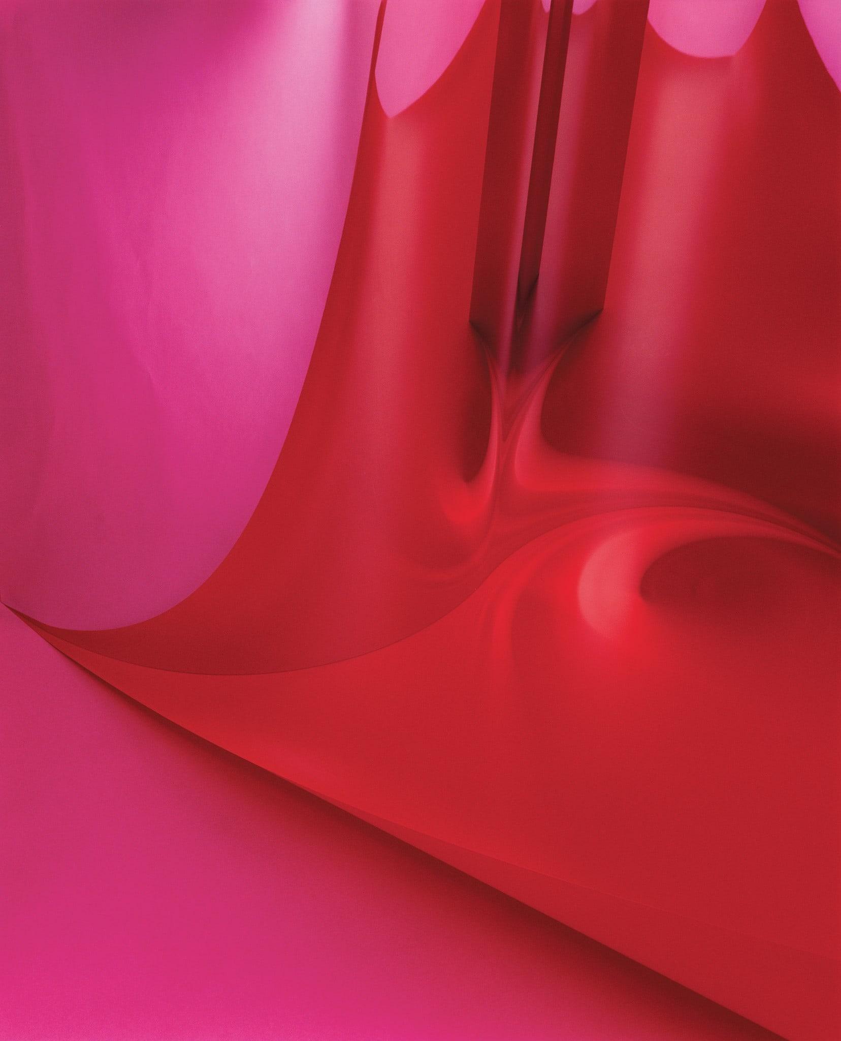 Rot-Pink-01 by Shirana Shahbazi