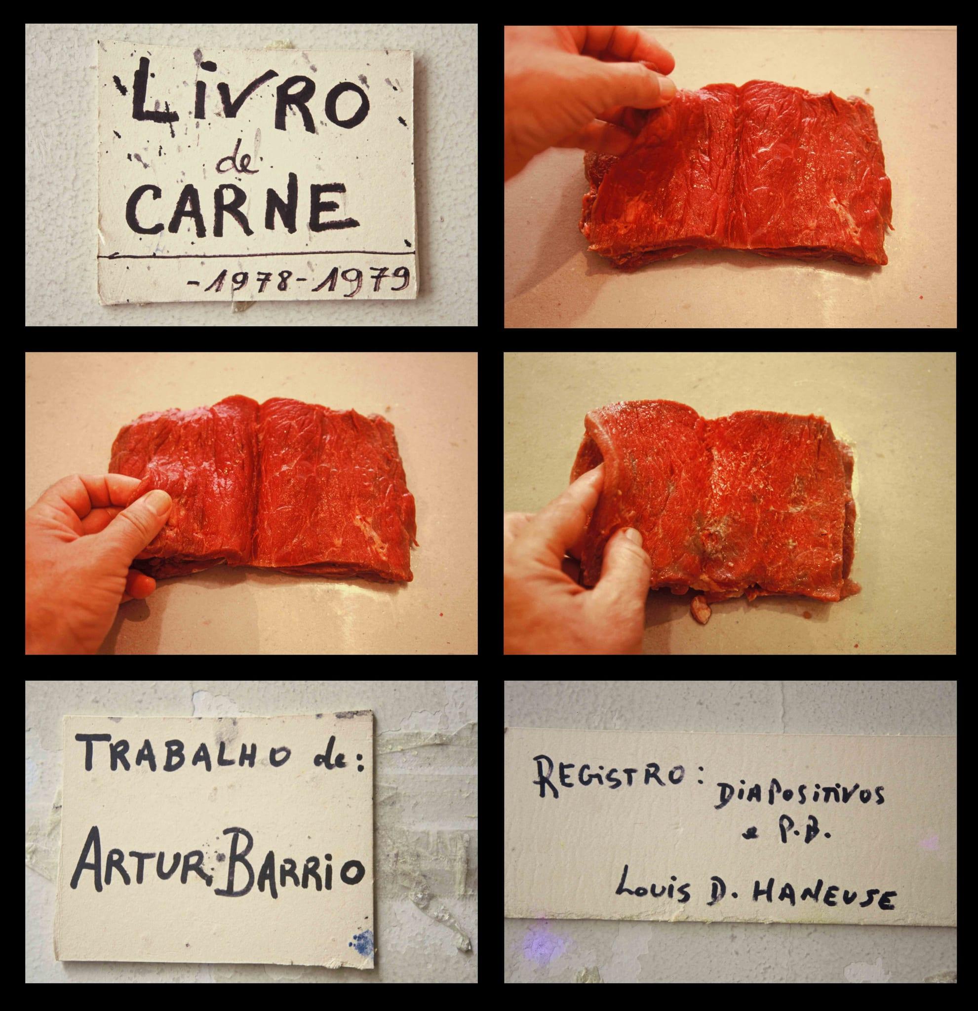Livro de Carne [Book of Meat] by Artur Barrio
