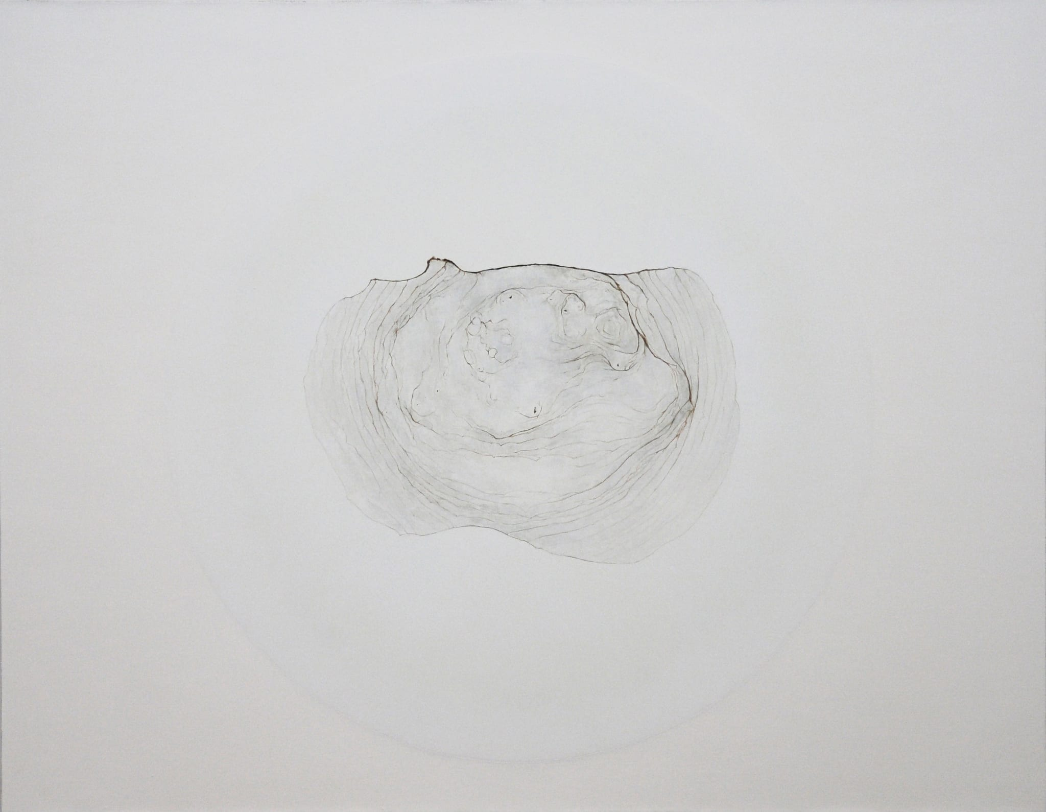 Stain T24 by Zhu Yu