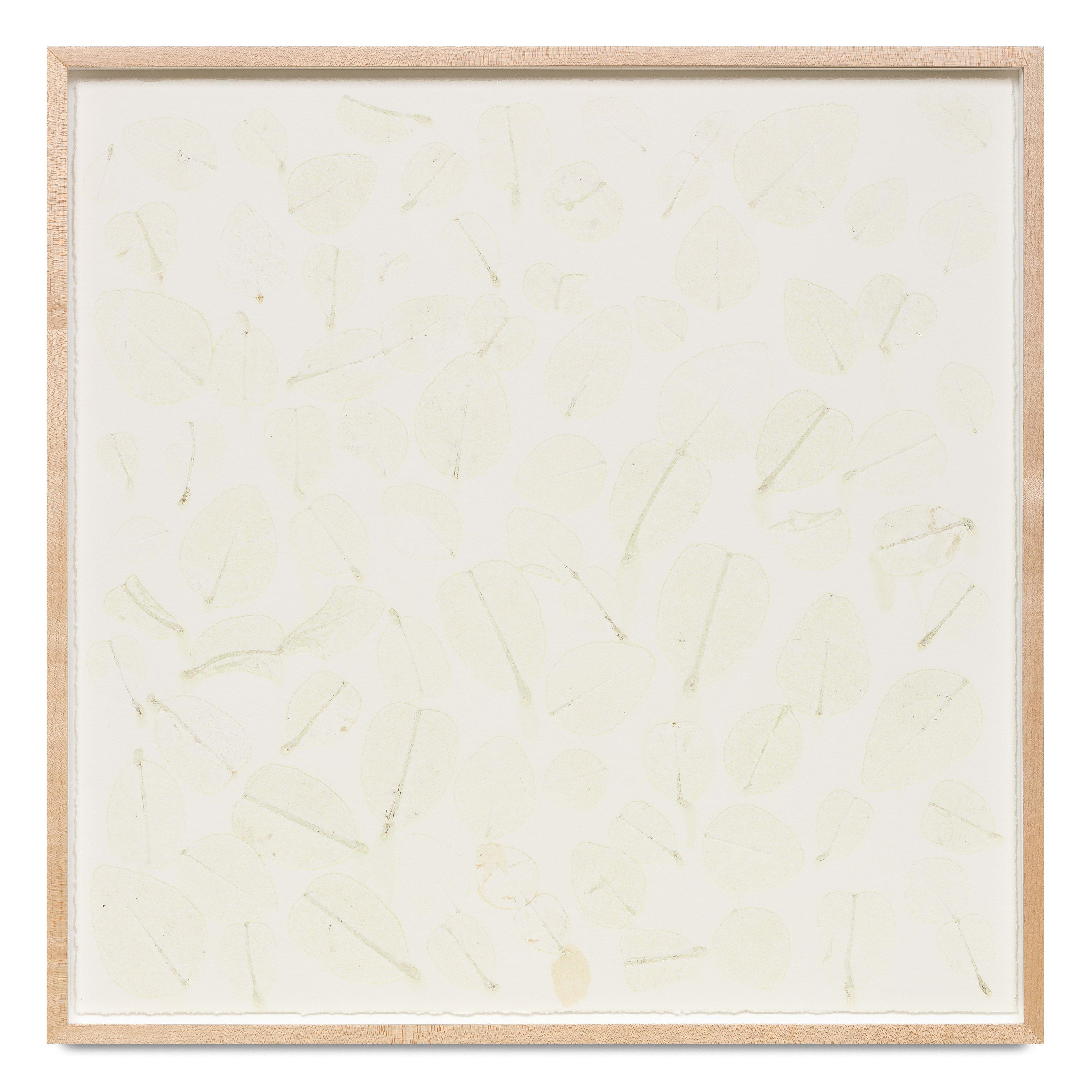 Edibles - Cold Storage, Fresh Pick, Lime Leaf, 50g by Haegue Yang