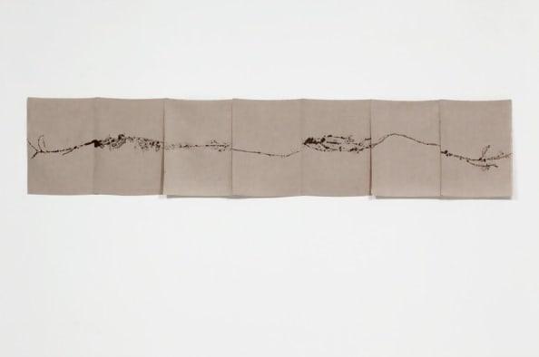 Field Recordings, 7 x eine Stunde, außerhalb Zürichs (Amazon Löwenzahn), 26 Juni by Helen Mirra