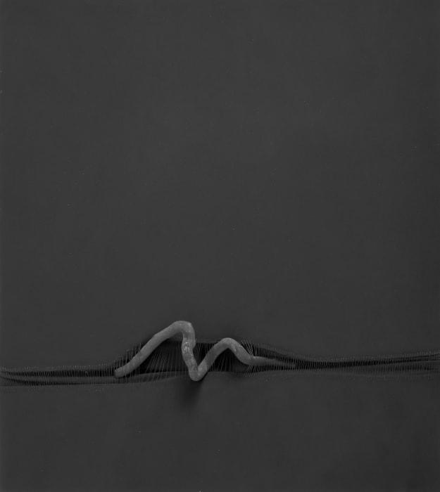 Senza Titolo 142 by Sidival Fila