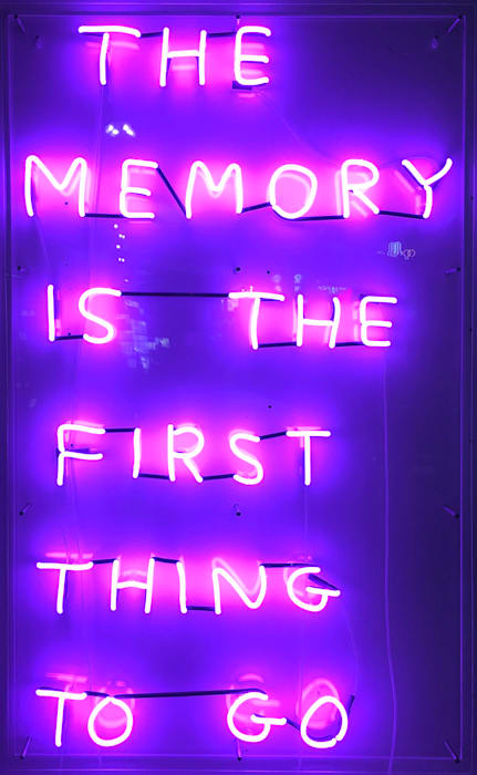 The Memory by David Shrigley