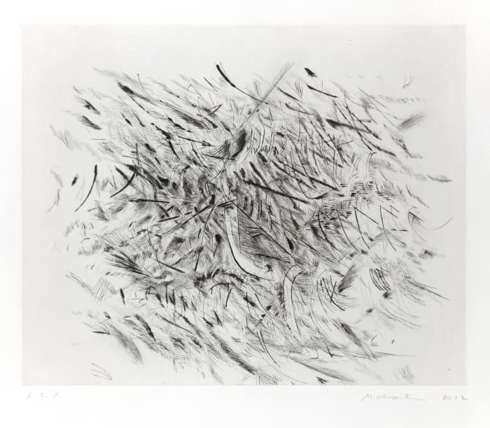 Haka by Julie Mehretu