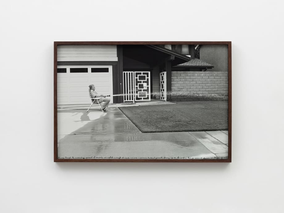 Man waters lawn HB, 2013 by Ed Templeton