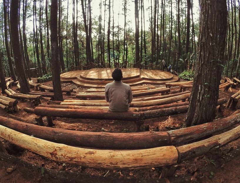 Hutan Punus Mangunan Yang Instagramable