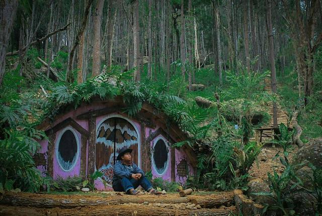 Hutan pinus jogja wisata intagramable di jogja