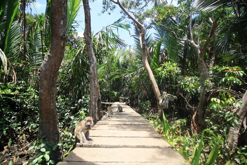 2 Tempat Wisata di Banjarmasin Kalimantan Selatan Ini Wajib Mampir