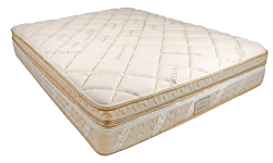 The Solaire Mattress