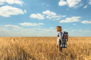Dreaming boy in a field