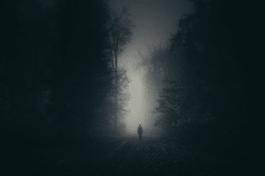 lucid dreaming at night in the dark woods