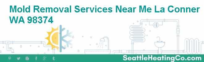 Mold Removal Services Near Me La Conner WA 98374