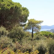 Vente maison / villa Sainte-maxime 749000€ - Photo 13