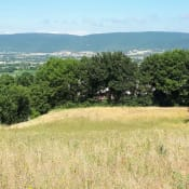 Vente terrain Roynac