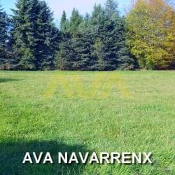 Terrain plat à 10 minutes d'Oloron et Navarrenx