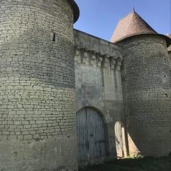Neuville De Poitou - 12 pièce(s) - 500 m2
