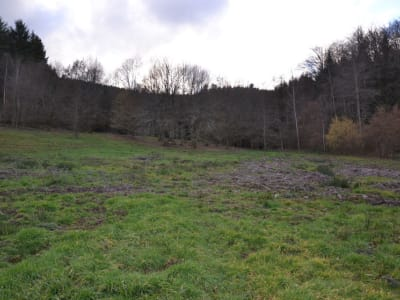 TERRAIN NON CONSTRUCTIBLE ANOULD - 5871 m2