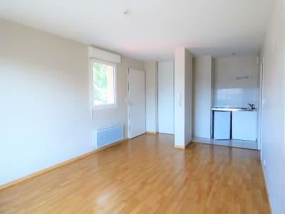 Appartement  T1 - Montussan