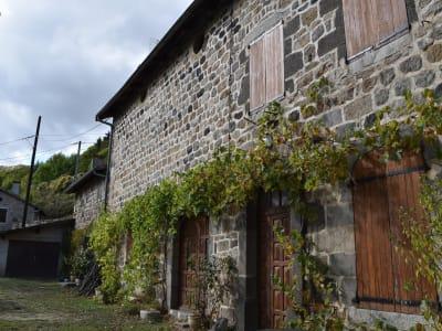 Maison en pierre de village