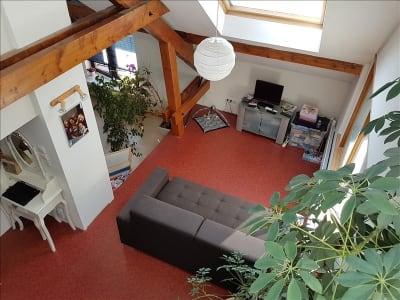 Appartement Saint Die Des Vosges 8 pièce(s) 240 m2