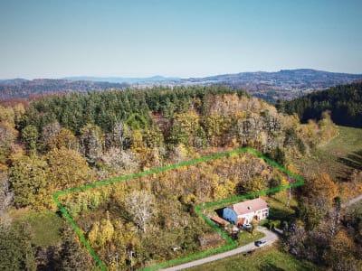 Terrain Saint Die Des Vosges 5619 m2