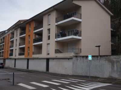 IMMEUBLE DE RAPPORT VIENNE - 20 pièce(s) - 1736 m2