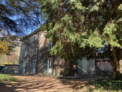 Ecully - 11 pièce(s) - 290 m2