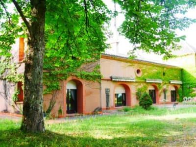 Toulouse - 12 pièce(s) - 480 m2