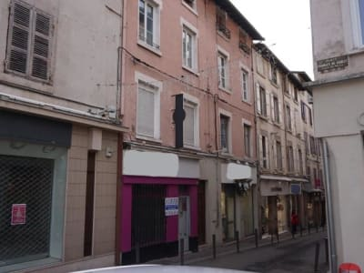 IMMEUBLE DE RAPPORT VIENNE - 12 pièce(s) - 480 m2