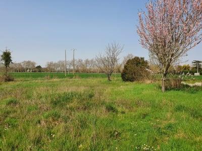 Terrain diffus de 695 m² au calme et viabilisé.