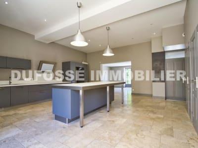 Lyon-9eme-arrondissement - 10 pièce(s) - 575 m2
