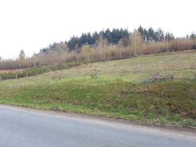 Terrain Saulcy Sur Meurthe 1063 m2