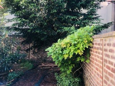 Duplex T2 avec jardin et box
