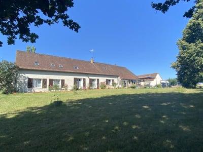 Chatillon Coligny - 9 pièce(s) - 250 m2