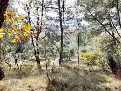 Terrain Aix En Provence 3200 m2  aprox