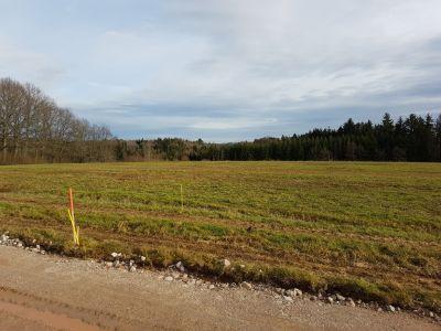 Terrain à bâtir plat viabilisé et borné, très bel environnement