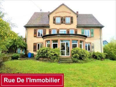 Ingwiller - 13 pièce(s) - 440.88 m2