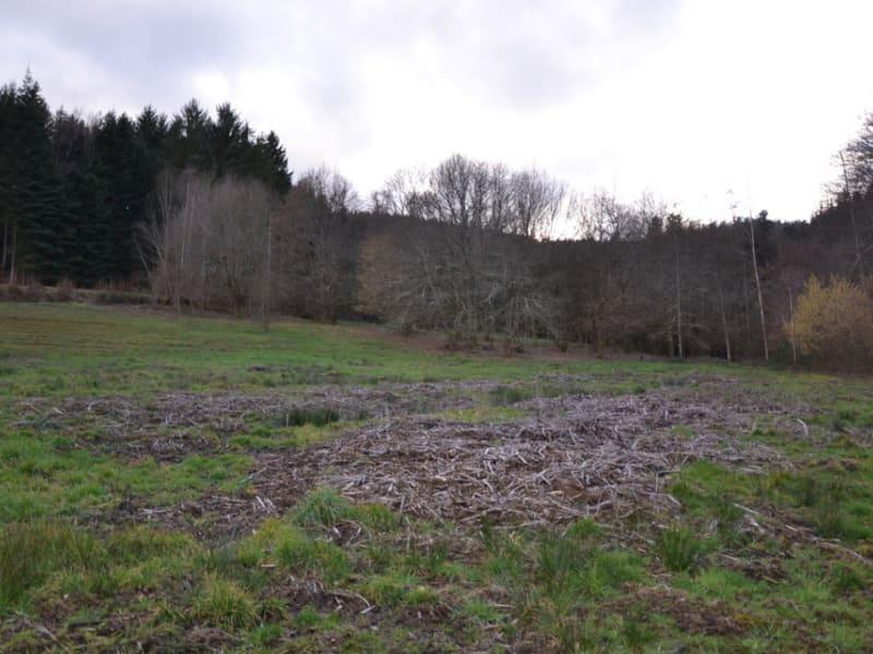 Vente terrain Anould 29000€ - Photo 2