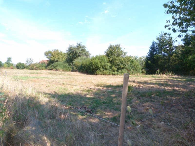 Sale site Charny oree de puisaye 13500€ - Picture 1