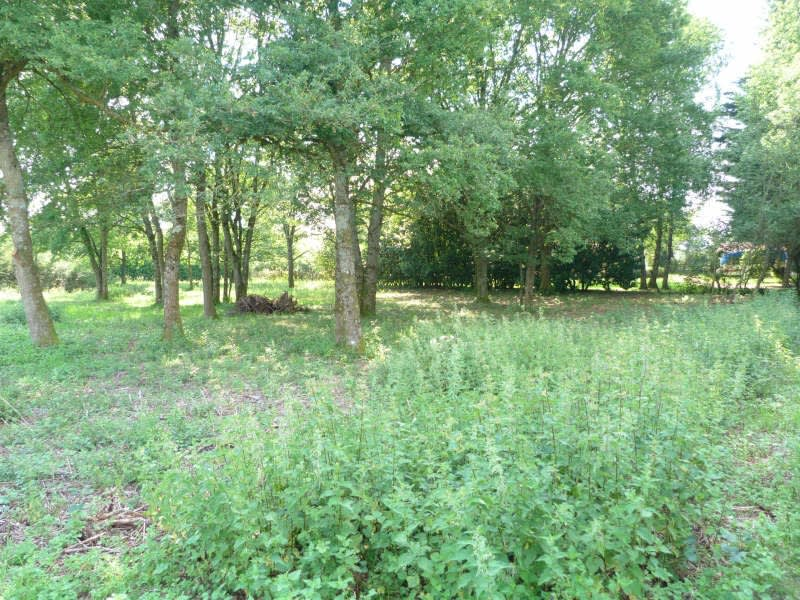 Sale site Secteur charny 17000€ - Picture 1
