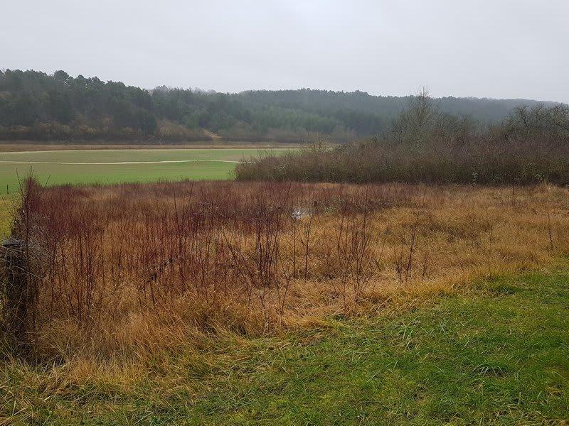 Vente terrain Pont sur yonne 46000€ - Photo 3