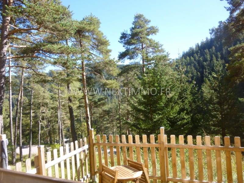 Vente appartement Valdeblore 80 000€ - Photo 9