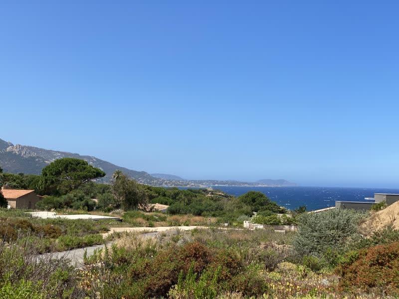 Vente terrain Corbara 680000€ - Photo 3