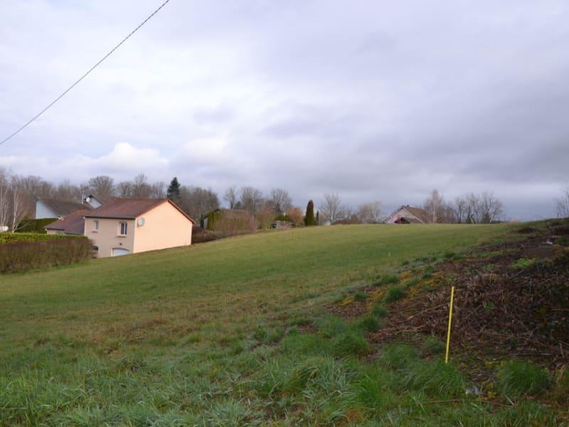 Vente terrain Saulcy sur meurthe 74000€ - Photo 3