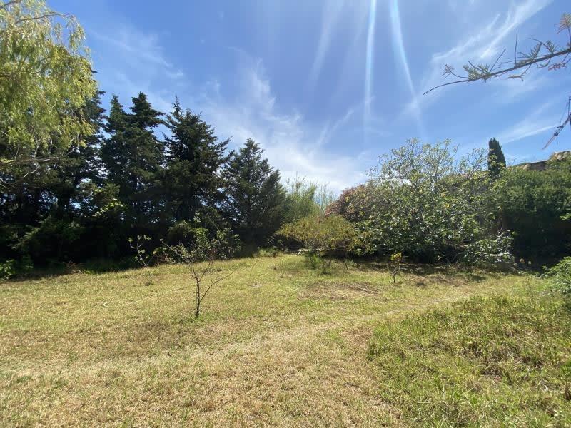 Vente maison / villa Monticello 460000€ - Photo 10