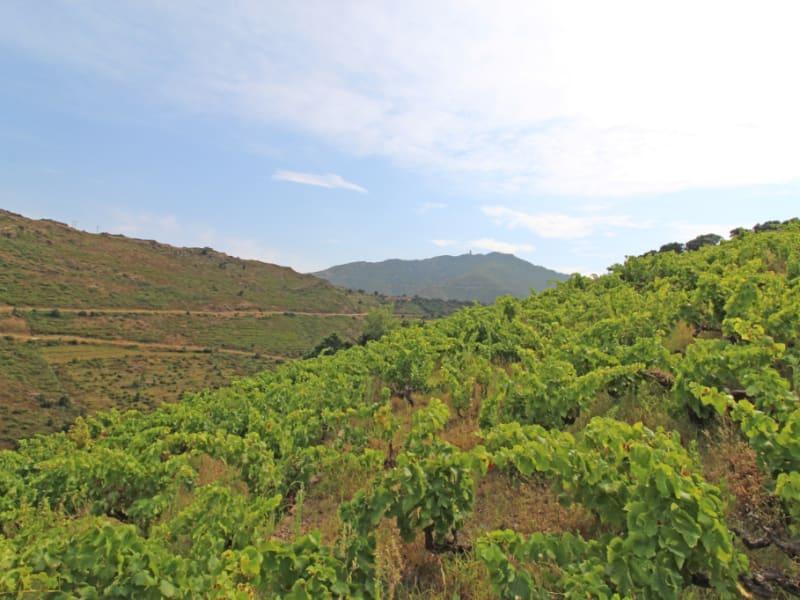 Vente terrain Collioure 99000€ - Photo 6