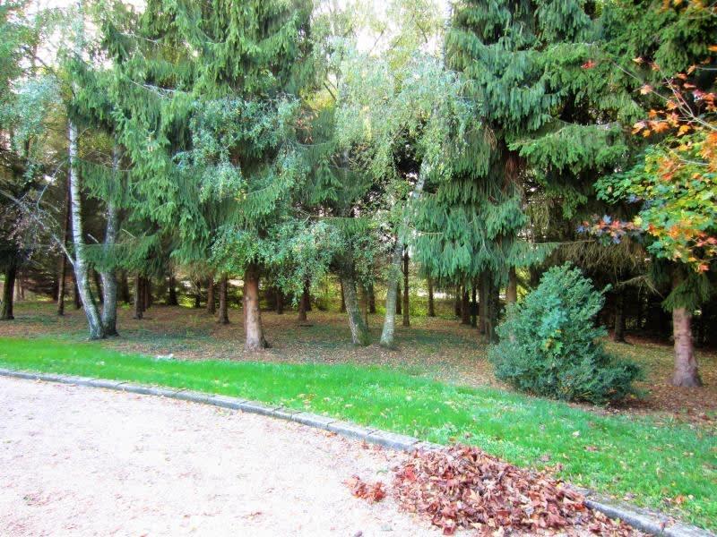 Sale house / villa Tronget 176550€ - Picture 2