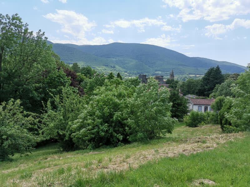 Vente terrain St amans valtoret 39500€ - Photo 3