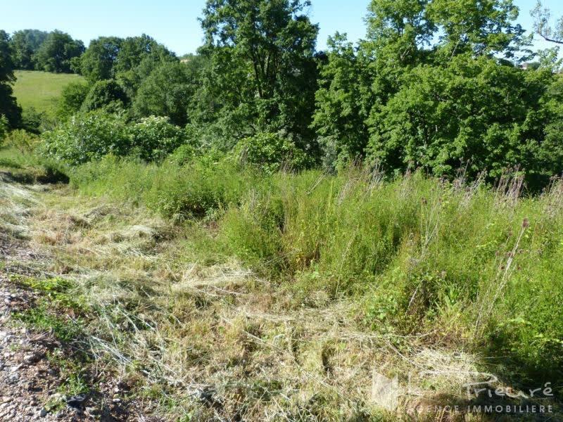 Verkoop  stukken grond Denat 35000€ - Foto 1