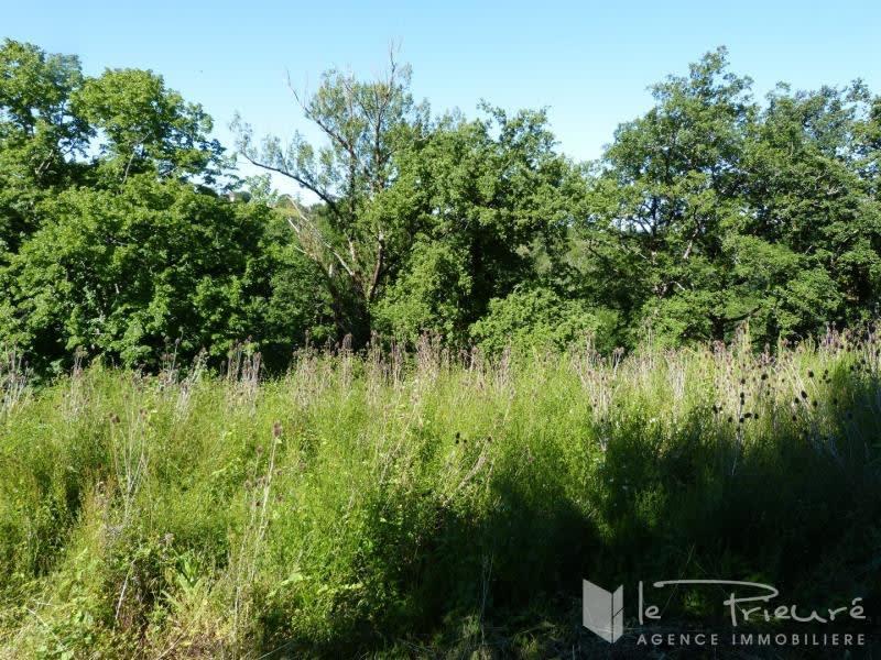 Verkoop  stukken grond Denat 35000€ - Foto 2
